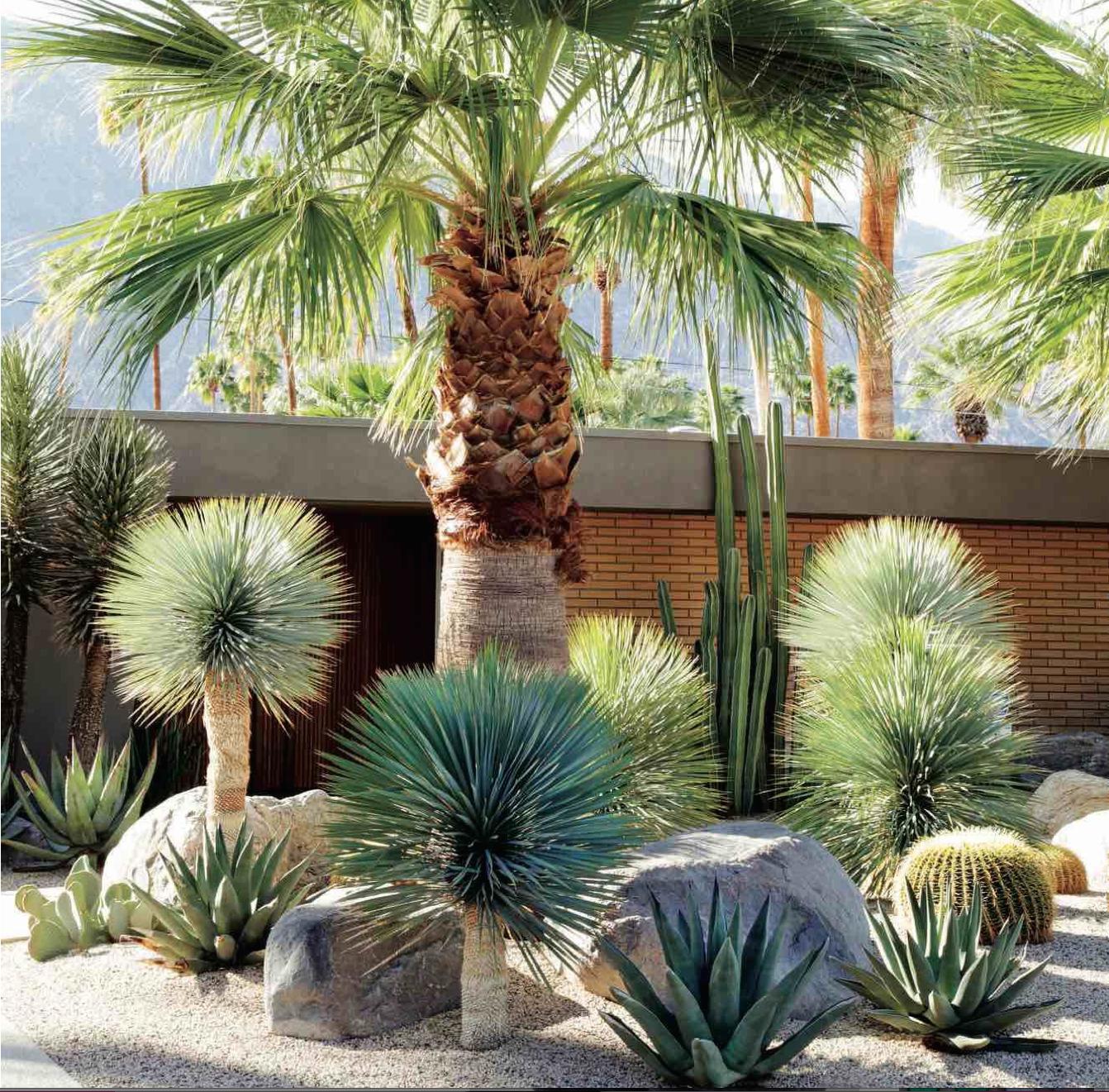 Épinglé Par Francoise Hernandez Sur Jardin   Décoration ... avec Amenagement Jardin Exterieur Mediterraneen