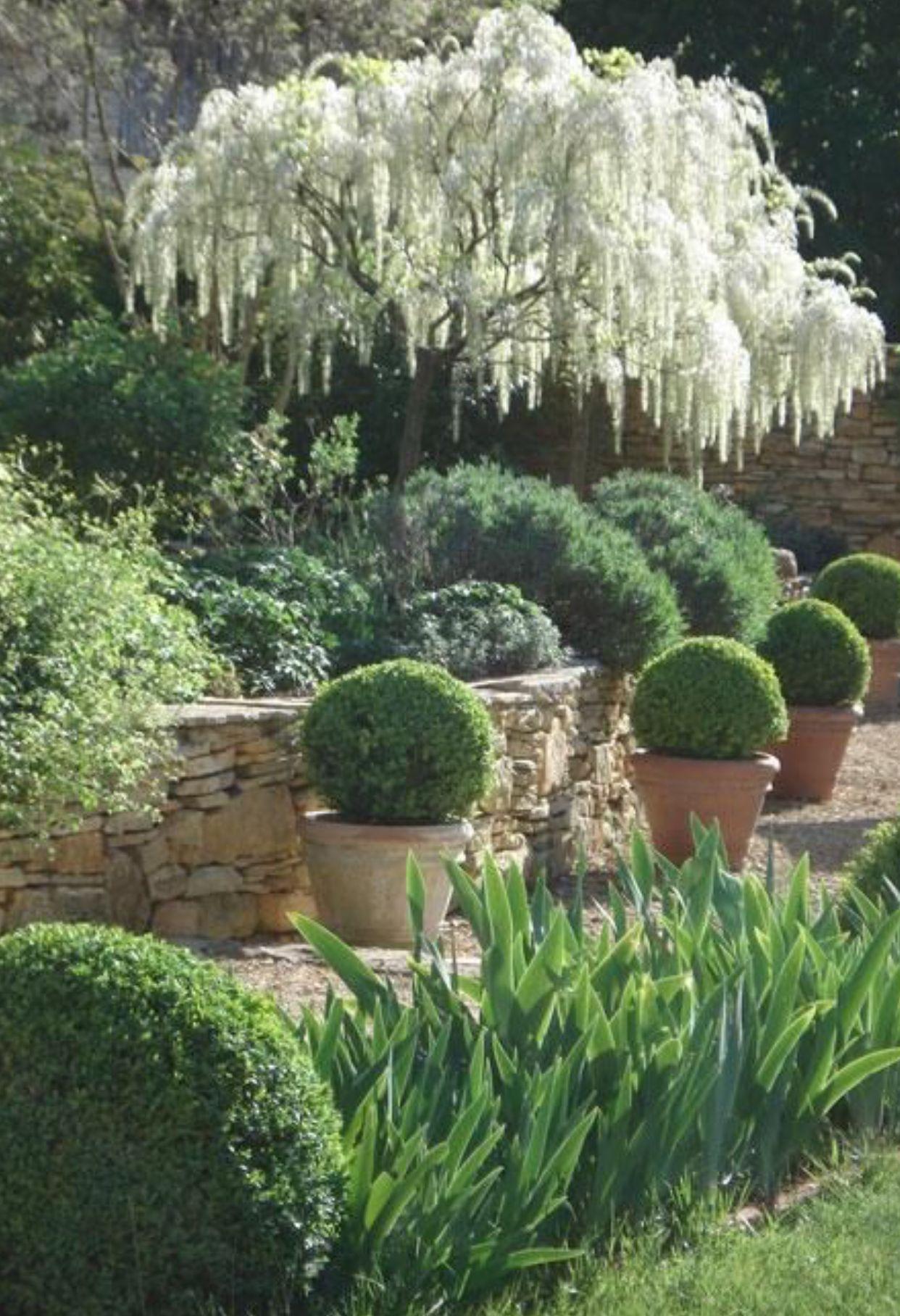 Épinglé Par Jeannette Schweizer Sur Garten | Jardin ... dedans Amenagement Petit Jardin Mediterraneen