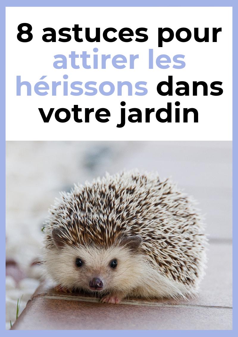 Épinglé Par Rosemay Gungadeen Sur Tintin | Jardinage Potager ... tout Maison Pour Herisson Jardin