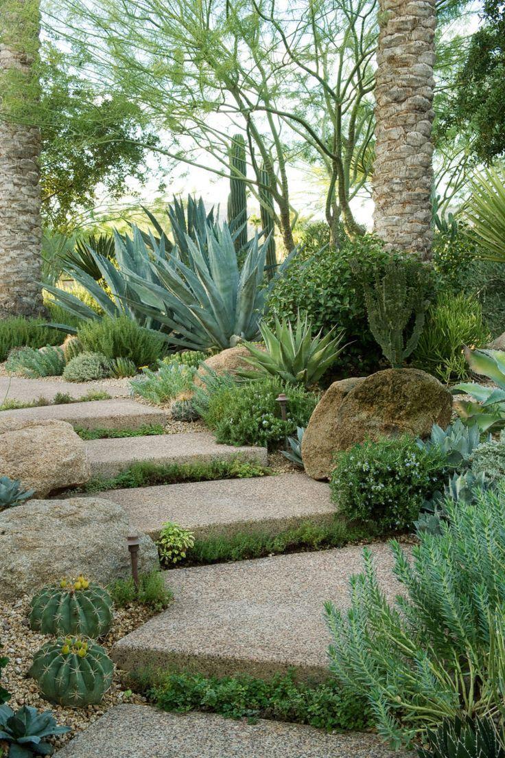 Épinglé Par Sylvie Vacca Sur Joli Jardin...   Jardin ... dedans Amenagement Jardin Exterieur Mediterraneen