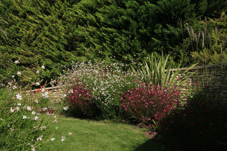 Épinglé Sur Projet Conceptuelles - Jardin Exotique dedans Refaire Son Jardin Paysagiste