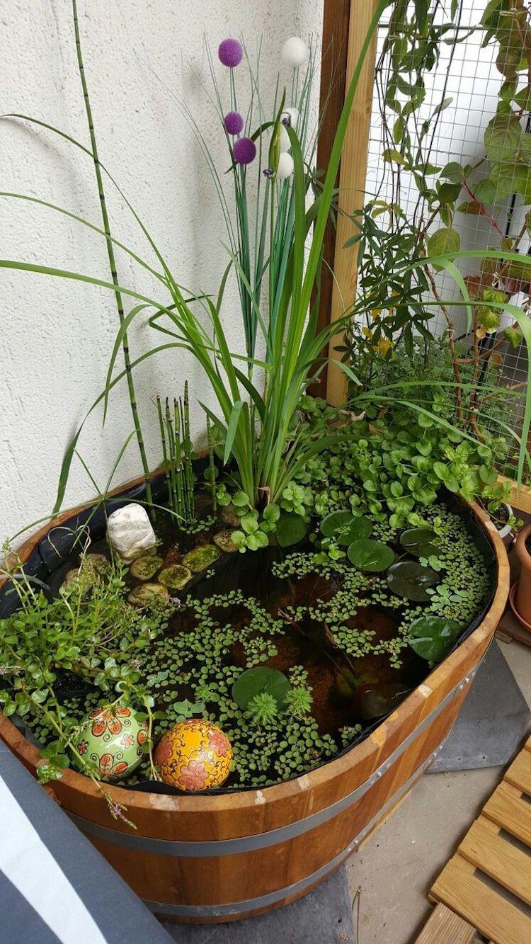 Épinglé Sur Yard + Garden serapportantà Mini Jardin Balcon