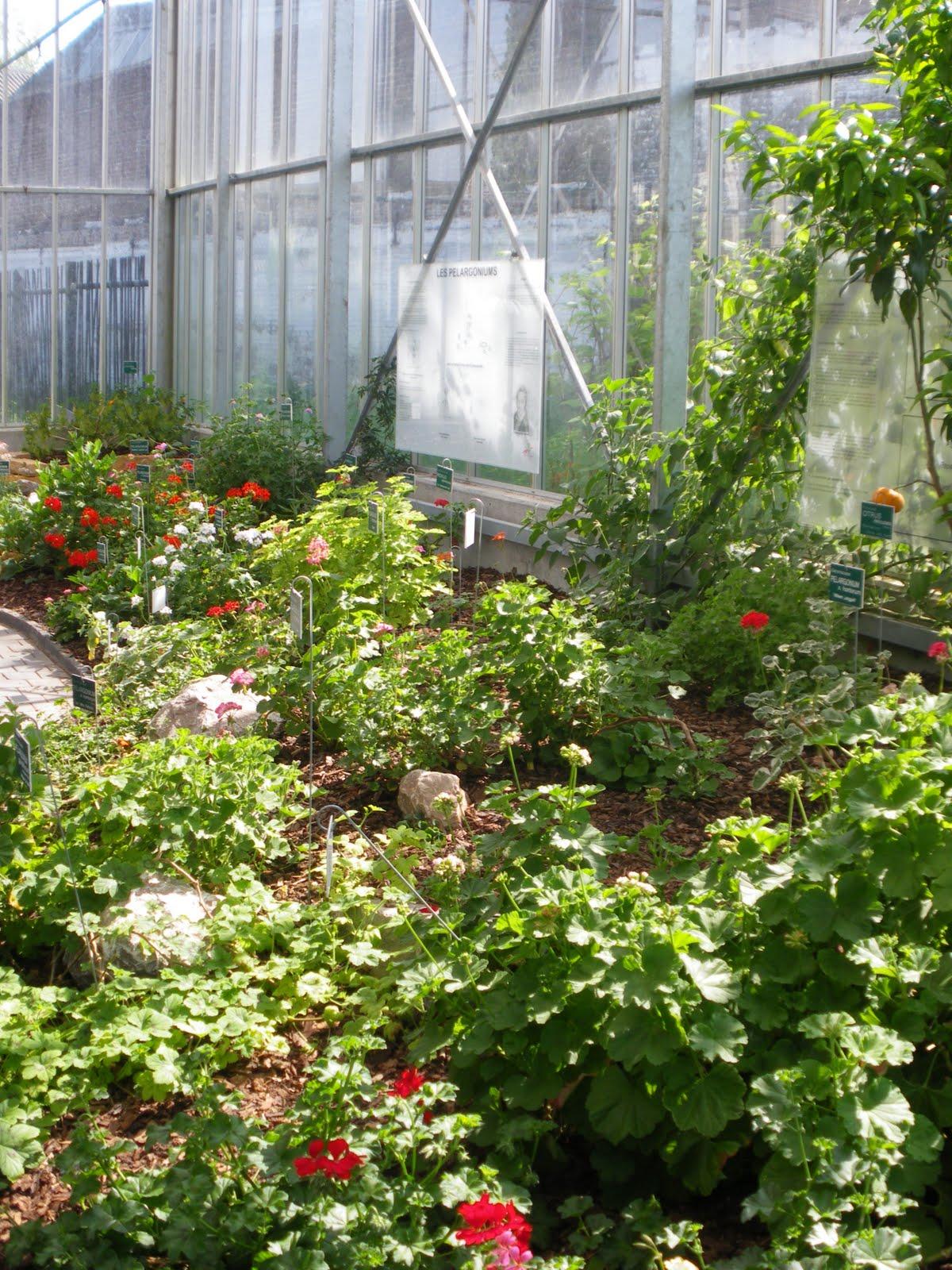 Espace Ouvert D'education Permanente: Visite Guidee Des ... serapportantà Serre De Jardin Occasion