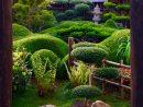 Esprit Zen Kindle - Bengali Adventure Books Pdf Free Download destiné Jardin Zen Belgique