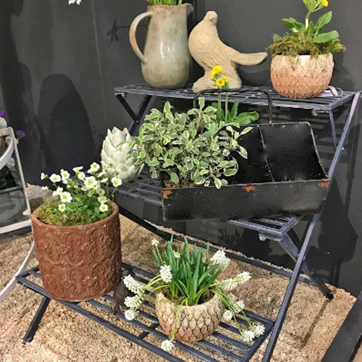 Étagère À Plantes 3 Marches En Fer Anthracite encequiconcerne Etageres Jardin Pour Plantes
