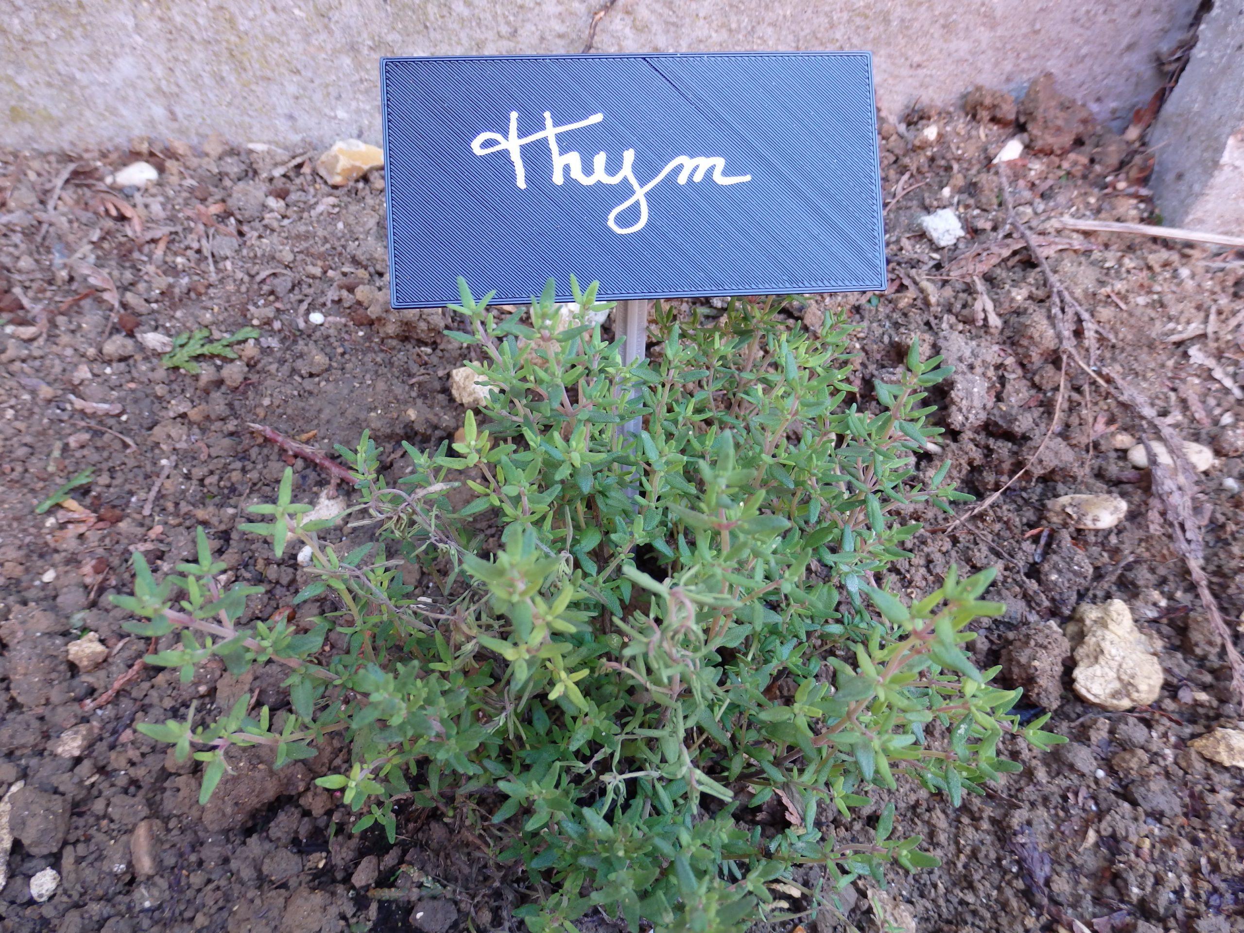 Etiquette For The Garden / Etiquette Pour Le Jardin By ... serapportantà Etiquette Jardin