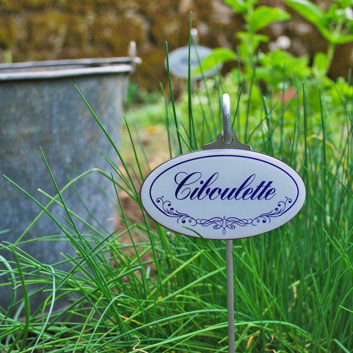 Etiquettes De Jardin Plantes Aromatiques Vintage encequiconcerne Etiquette Jardin