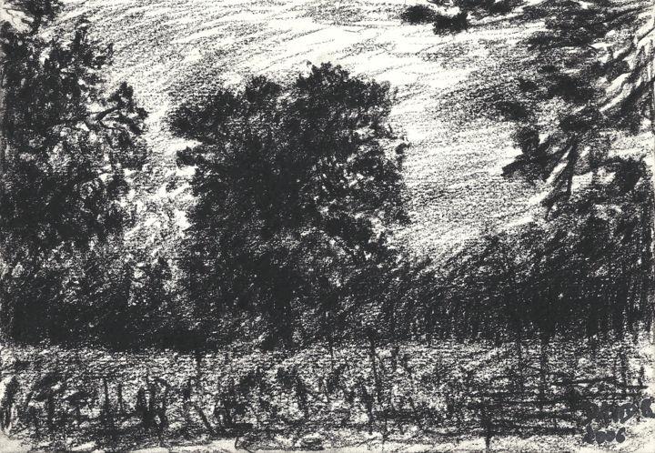 Etude D'un Arbre Çizim David Benayoun Tarafından | Artmajeur concernant Bache Noire Jardin