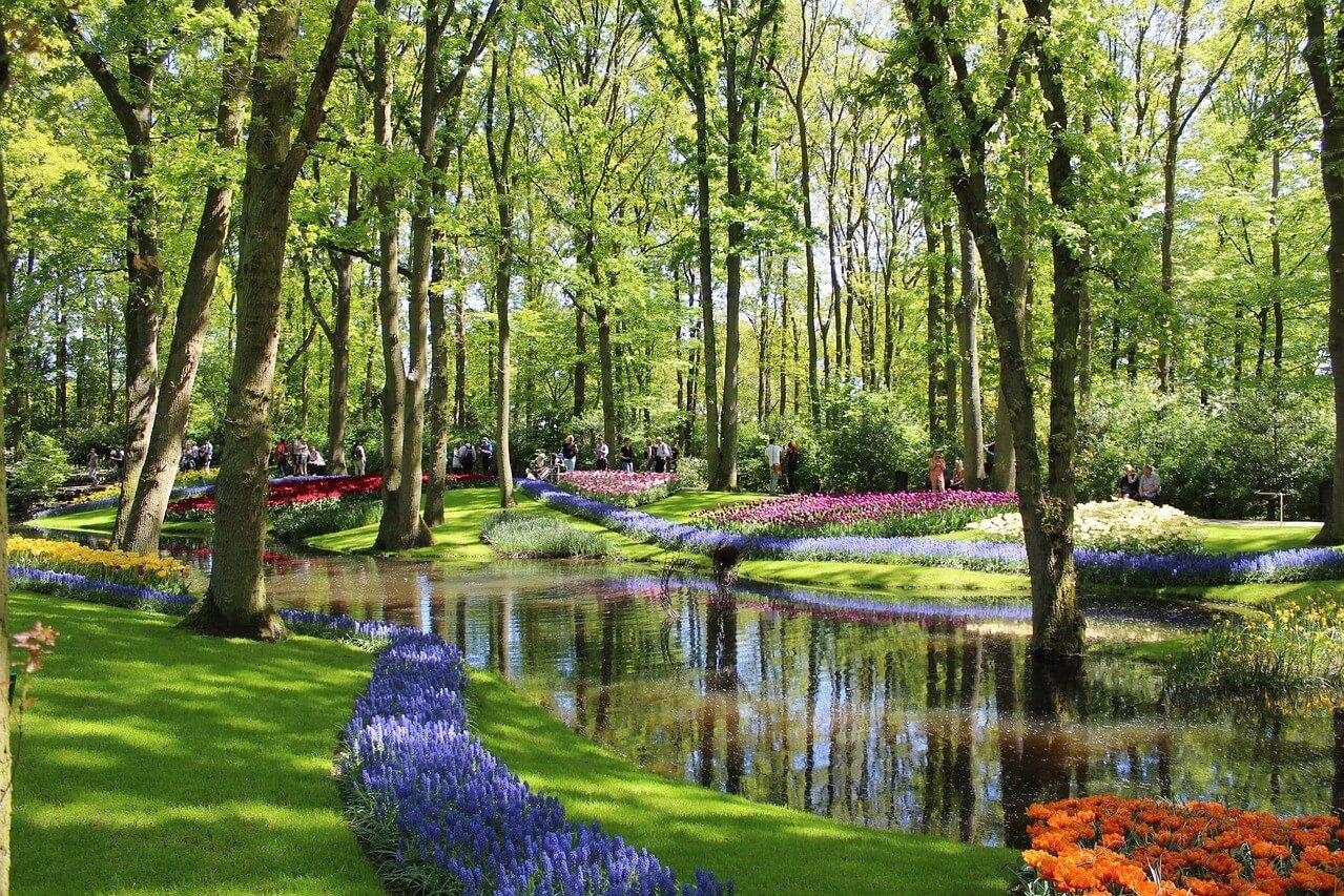 Excursión A Keukenhof Y Los Molinos De Kinderdijk - Bruselas ... pour Jardin De Keukenhof