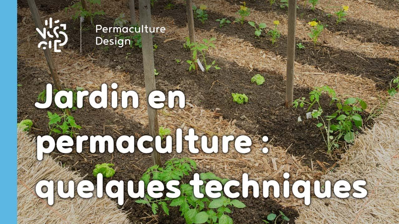 Exemple De Techniques Pour Un Jardin Potager En Permaculture destiné Exemple D Aménagement De Jardin