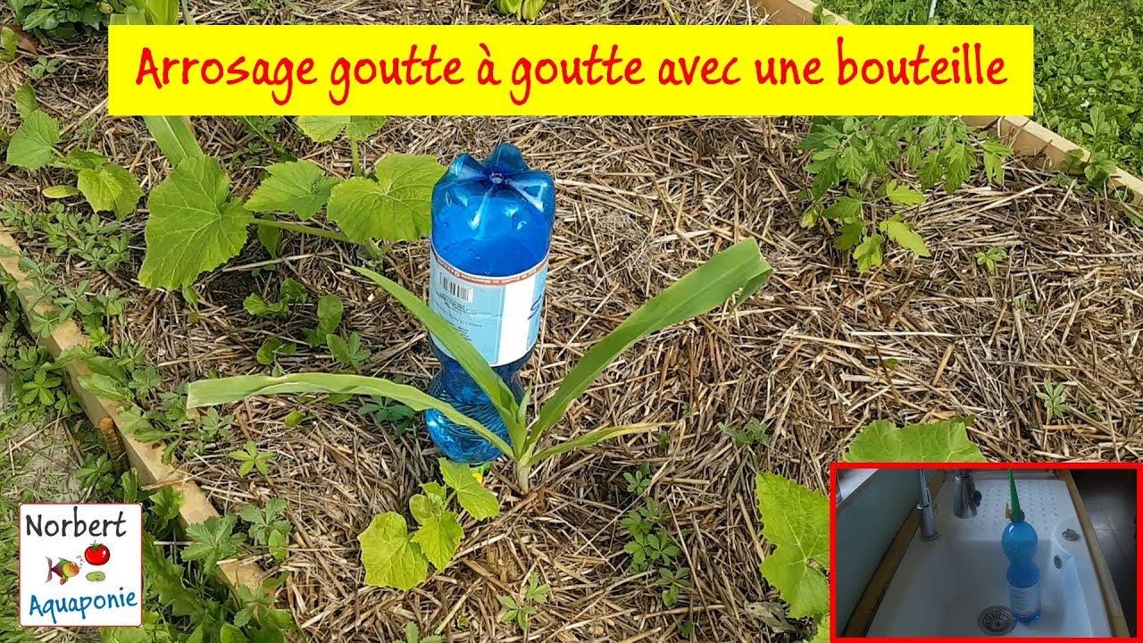 💦 Arrosage Goutte À Goutte Avec Une Bouteille tout Arrosage Goutte A Goutte Jardin