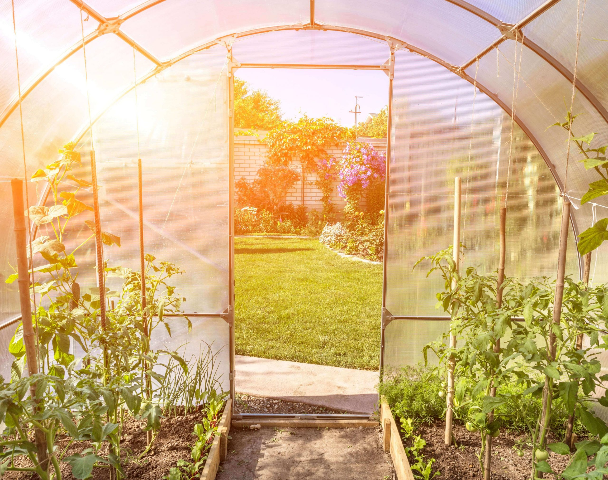 Fabriquer Soi-Même Sa Serre De Jardin - Salon Viving concernant Fabriquer Une Serre De Jardin