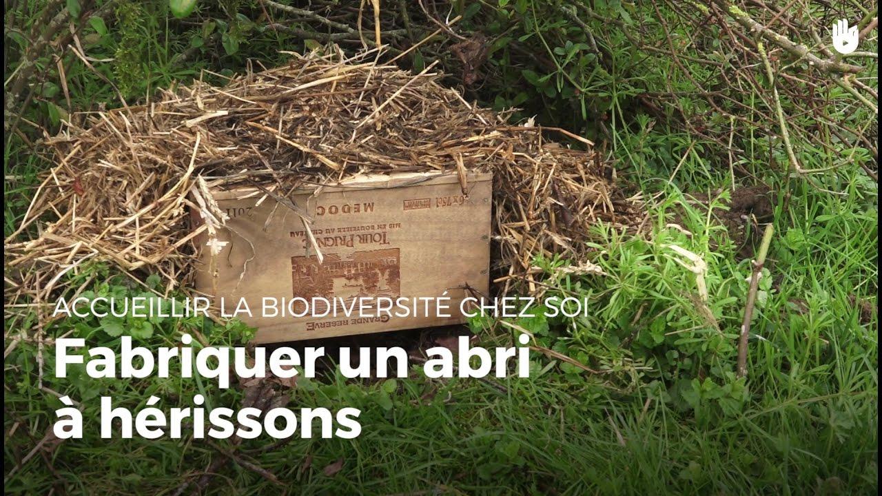Fabriquer Un Abri À Hérissons | Fabriquer Des Abris Pour Animaux concernant Maison Pour Herisson Jardin