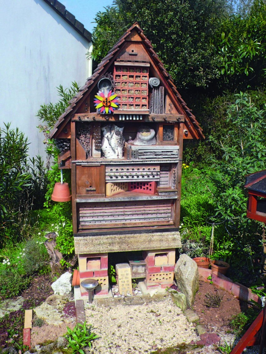 Fabriquer Un Abri À Insectes   La Chronique Républicaine dedans Fabriquer Un Abri De Jardin