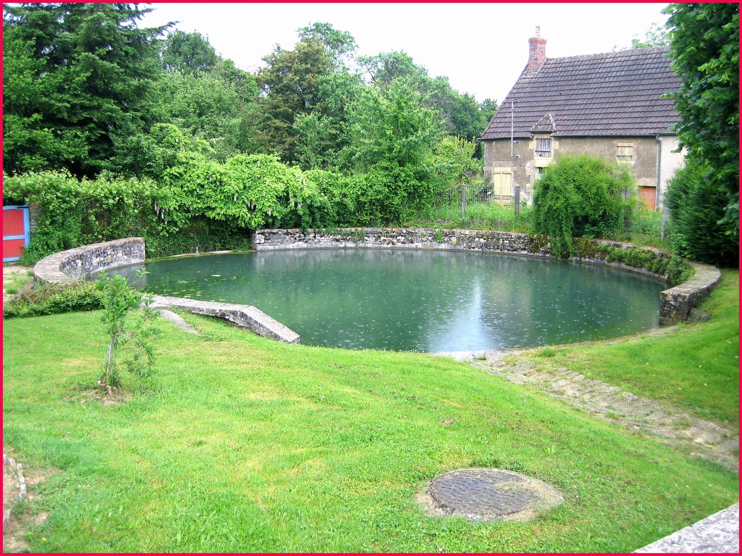 Fabriquer Une Cascade Pour Bassin Exterieur Incroyable Pompe ... destiné Bassin De Jardin Jardiland