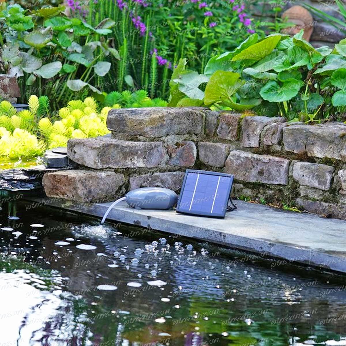 Fabriquer Une Cascade Pour Bassin Exterieur Incroyable Pompe ... encequiconcerne Bassin De Jardin Jardiland