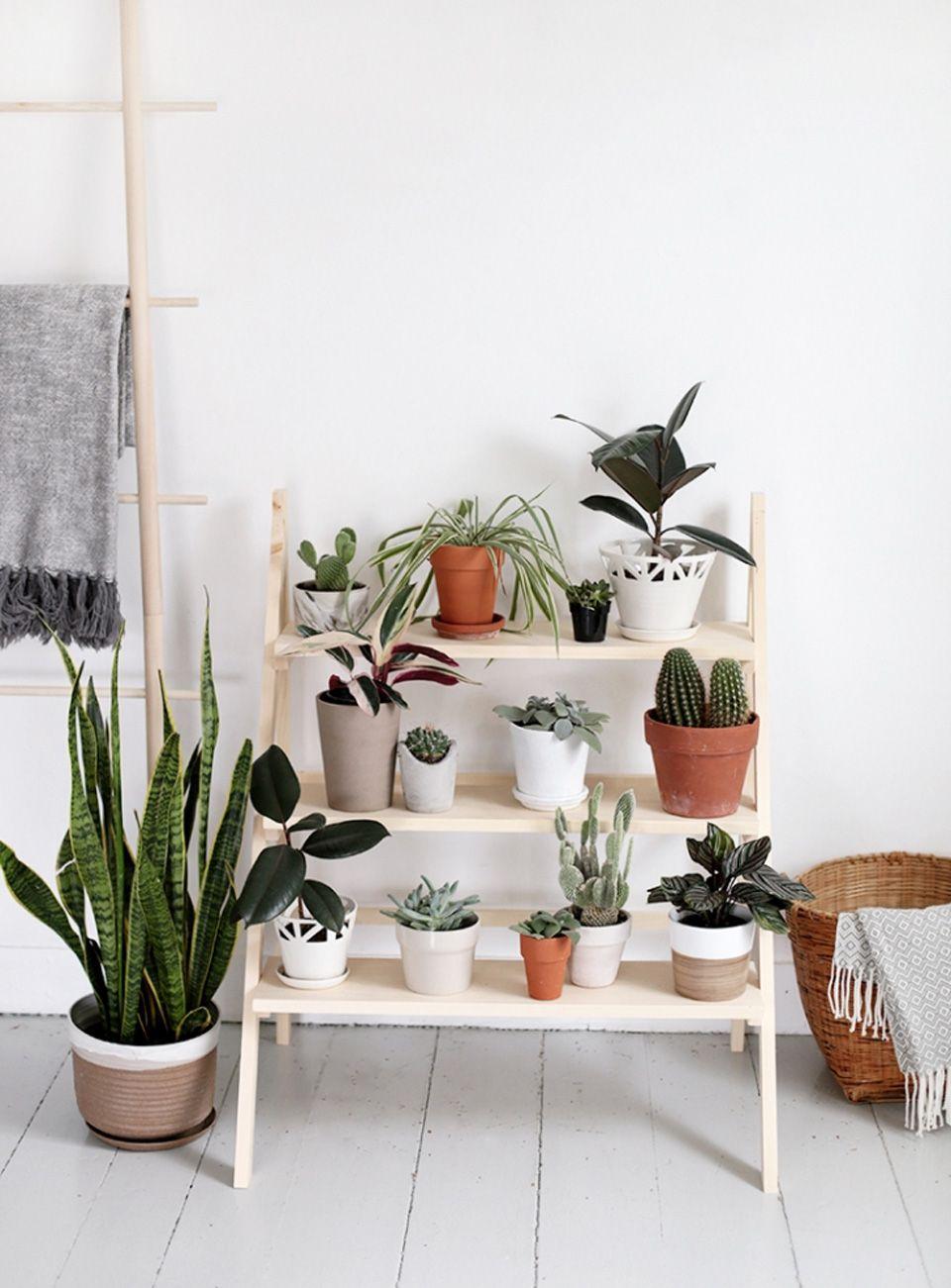 Fabriquer Une Étagère Pour Vos Plantes | Lieux | Etagere ... concernant Etageres Jardin Pour Plantes