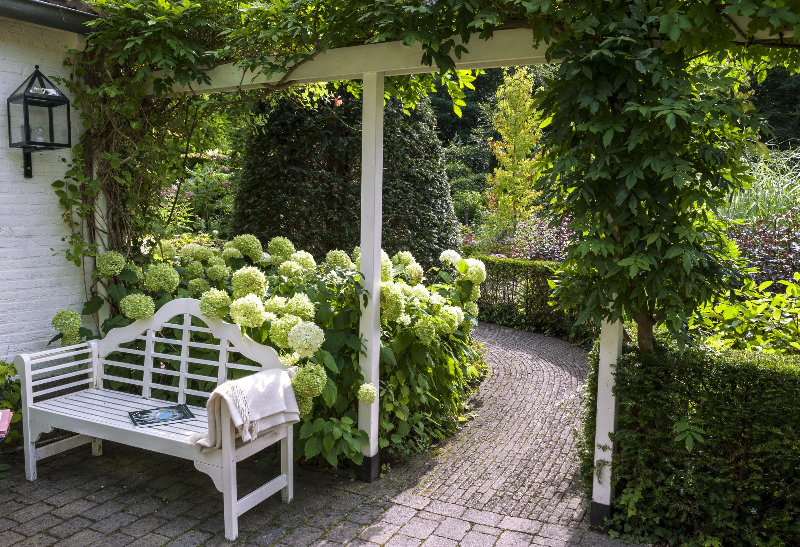 Fabriquer Une Pergola : Conseils Et Étapes De Montage serapportantà Arche Bois Jardin