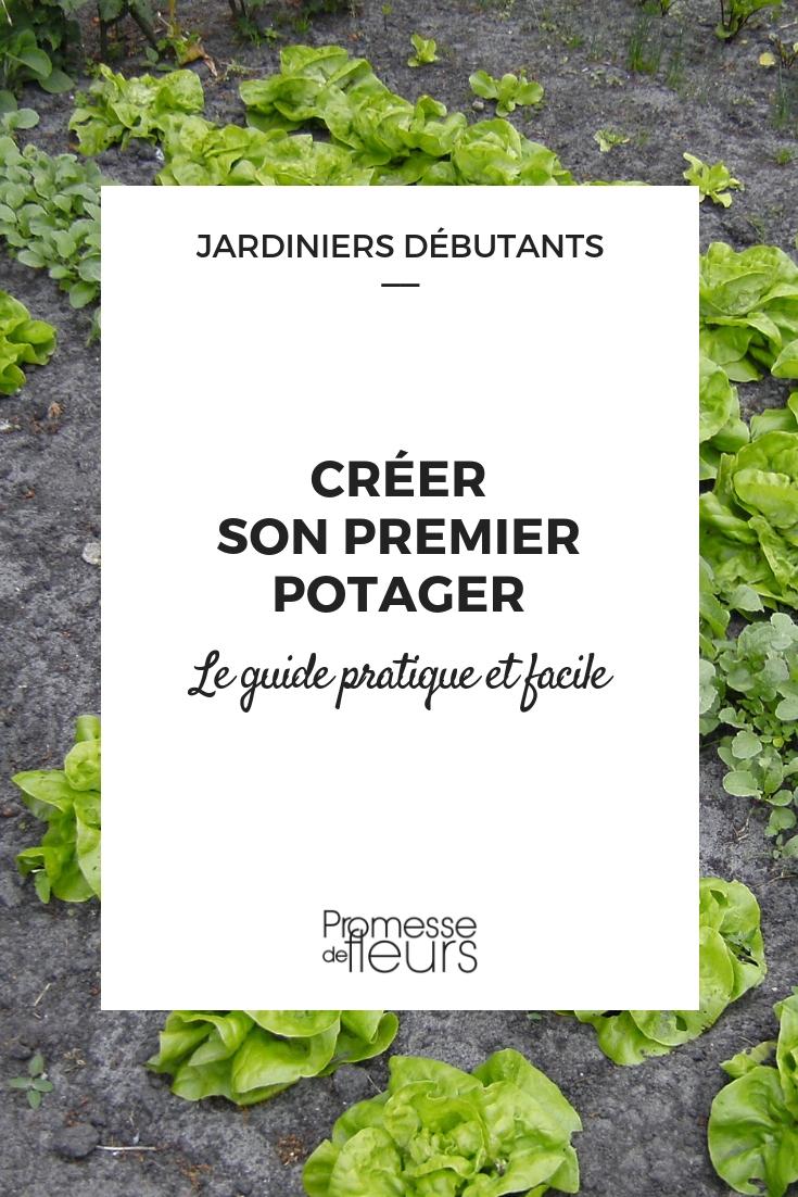 Faire Son Premier Potager - Guide Pour Les Débutants ... encequiconcerne Faire Un Petit Potager Dans Son Jardin