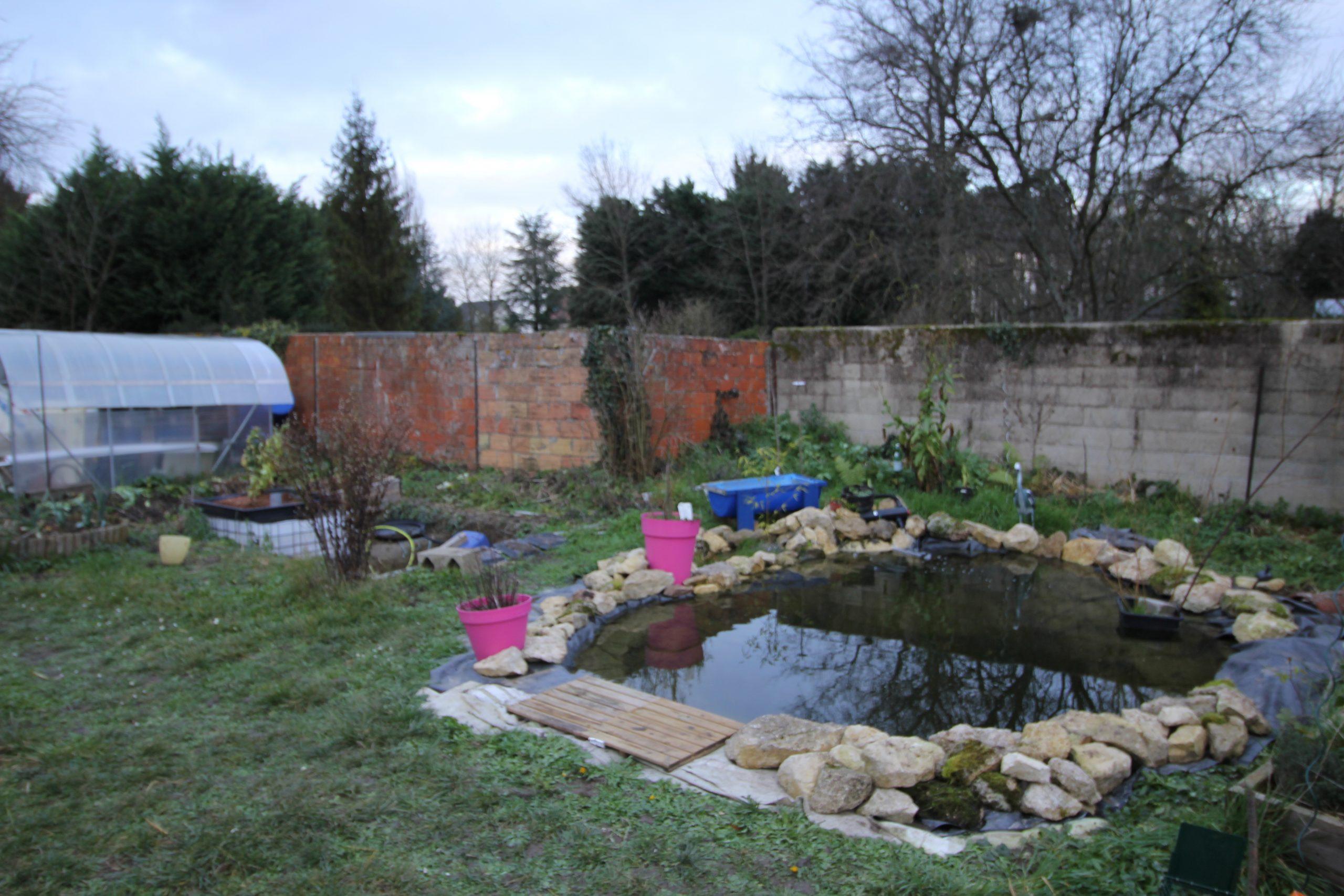 Faire Un Bassin Artificiel Dans Son Jardin - Aquaponie à Profondeur D Un Bassin De Jardin