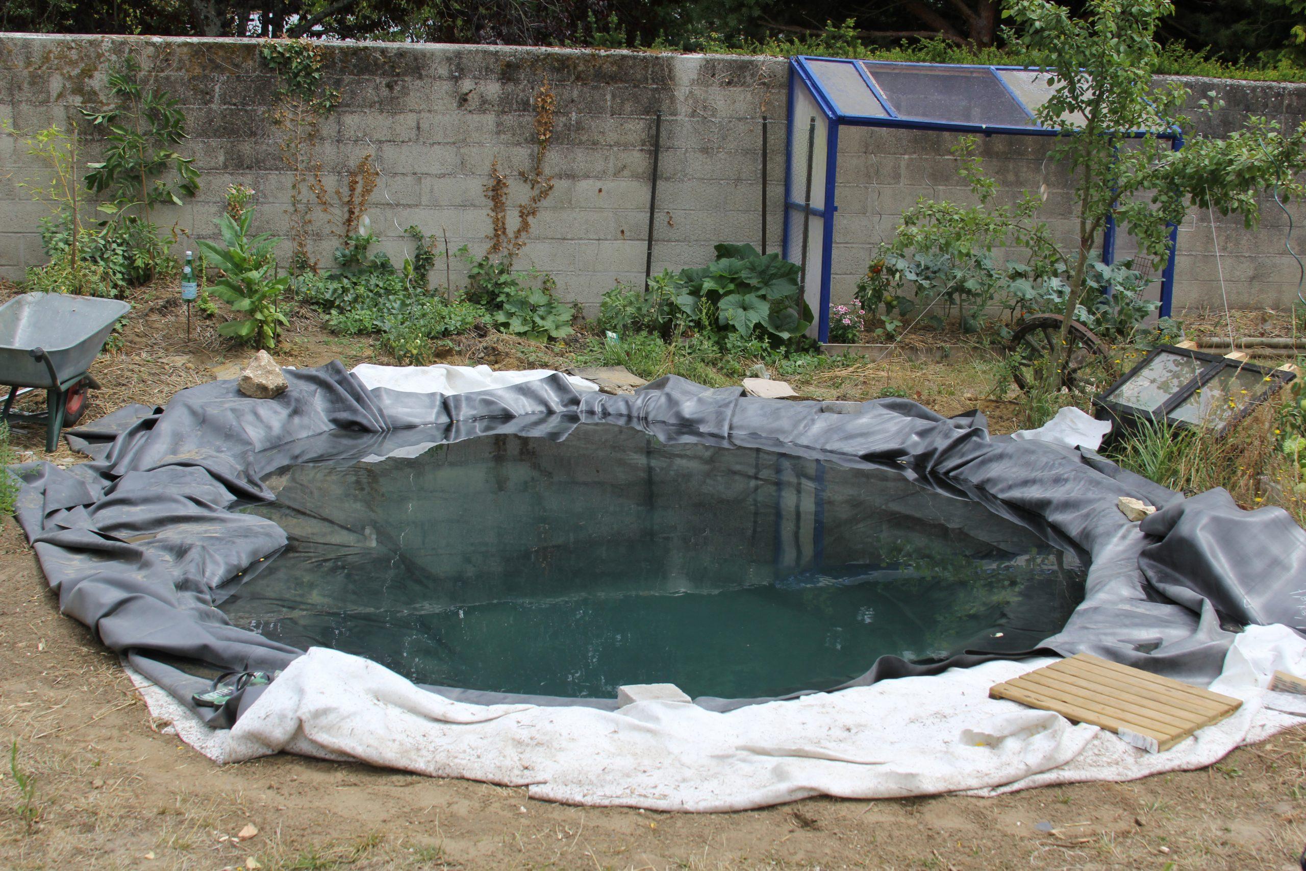 Faire Un Bassin Artificiel Dans Son Jardin - Aquaponie dedans Profondeur D Un Bassin De Jardin