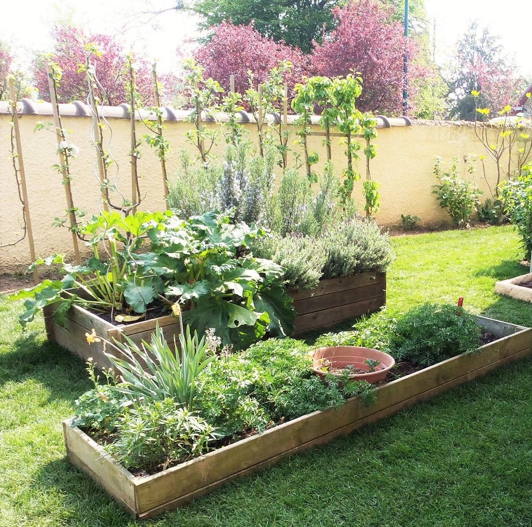 Faire Un Petit Potager Dans Un Jardin De Ville | 360M2.fr pour Aménagement D Un Petit Jardin De Ville