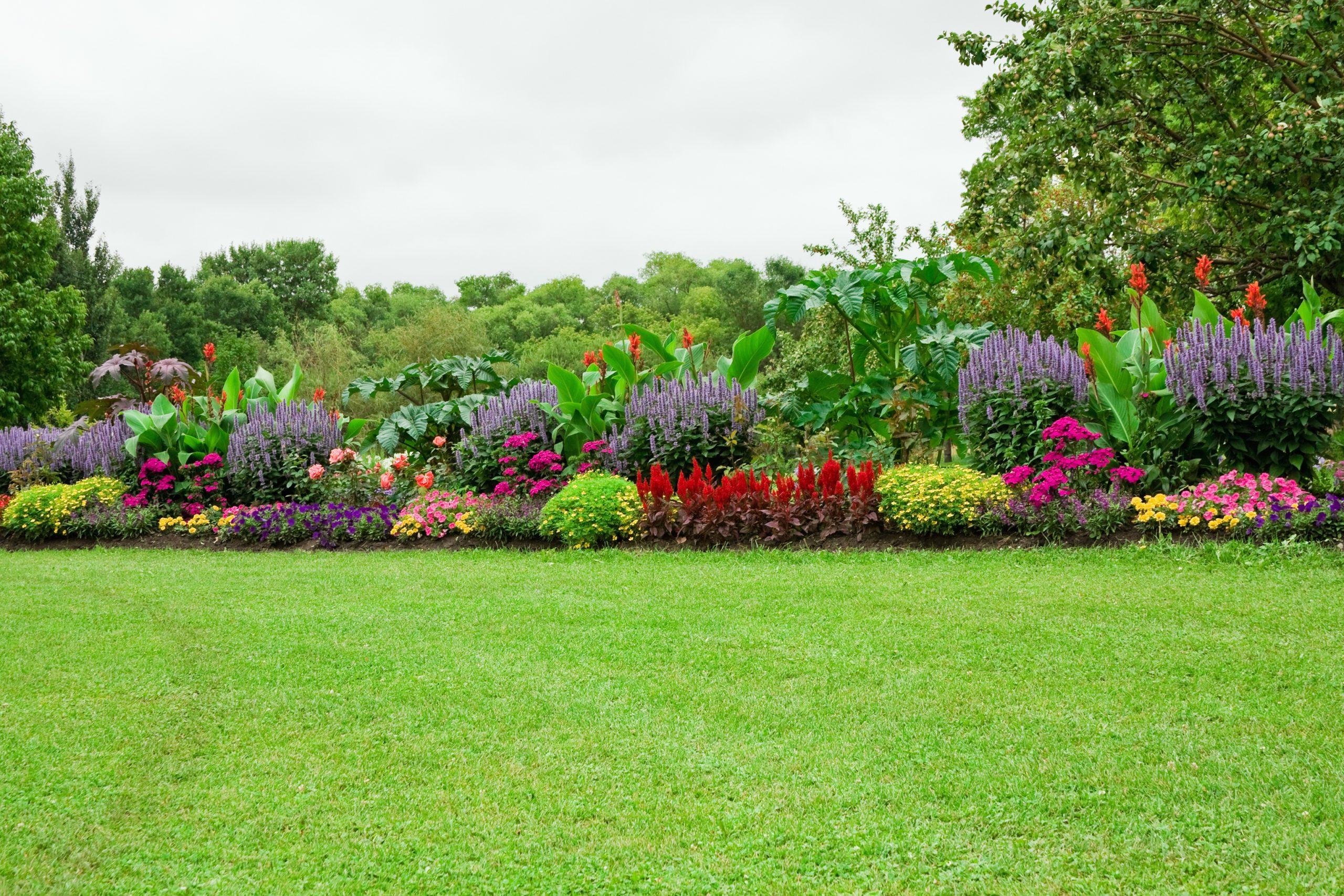 Fiche Conseils Pour Créer Un Magnifique Massif De Fleurs à Comment Realiser Un Jardin