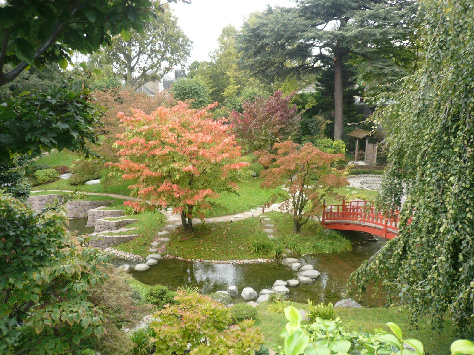 Fichier:p1060639 Jardin Japonais Moderne Tres Colore.jpg ... dedans Plante Pour Jardin Japonais