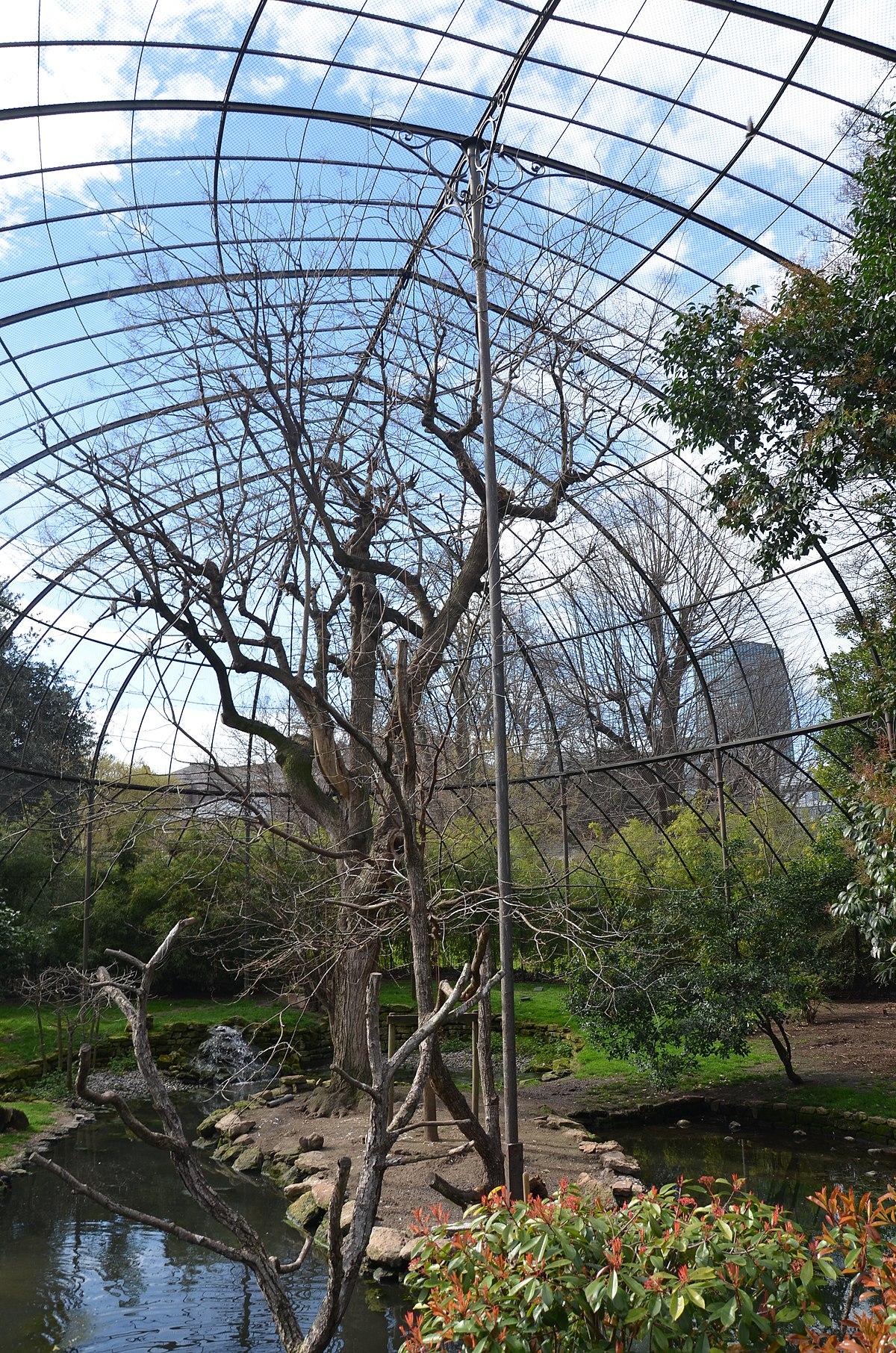 File:grande Volière De La Ménagerie Du Jardin Des Plantes ... encequiconcerne Voliere De Jardin