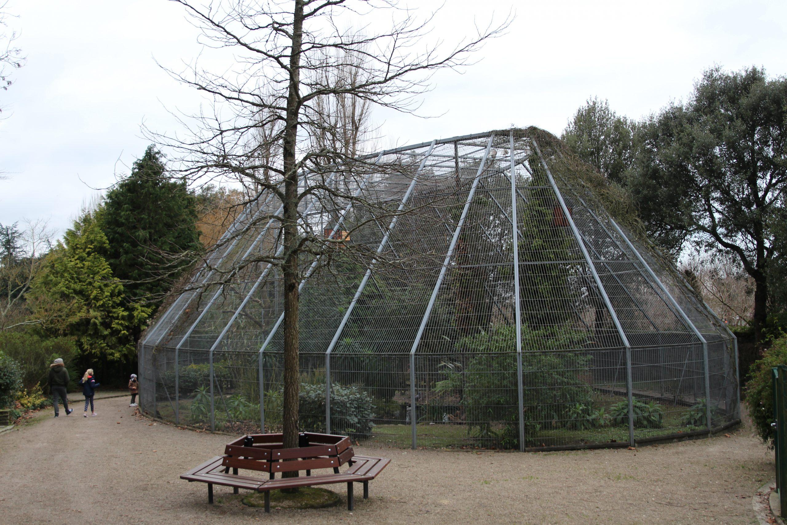 File:jardin Public De Cherbourg - Volière.jpg - Wikimedia ... serapportantà Voliere De Jardin