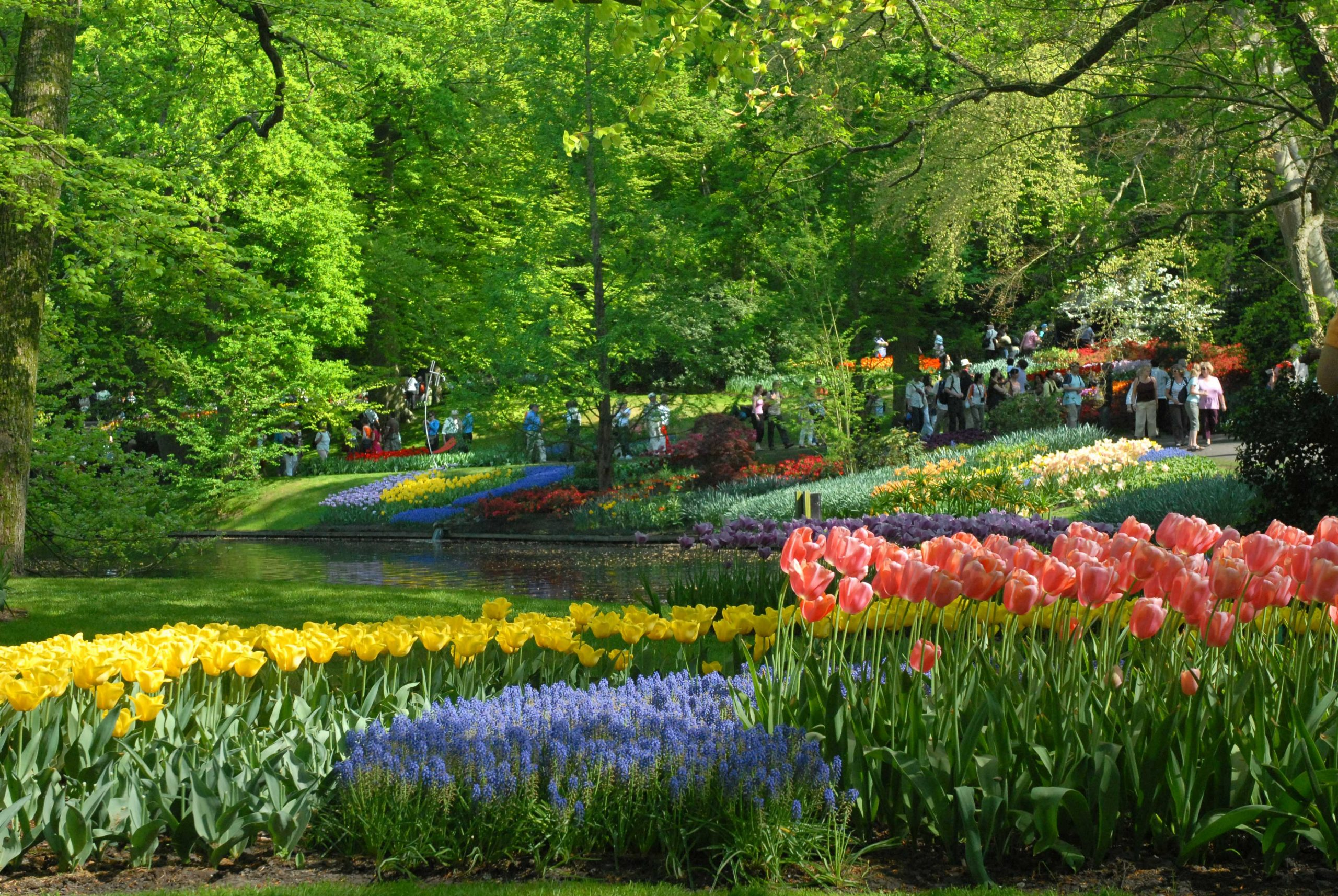 File:keukenhof-Szmurlo.jpg - Wikimedia Commons intérieur Jardin De Keukenhof