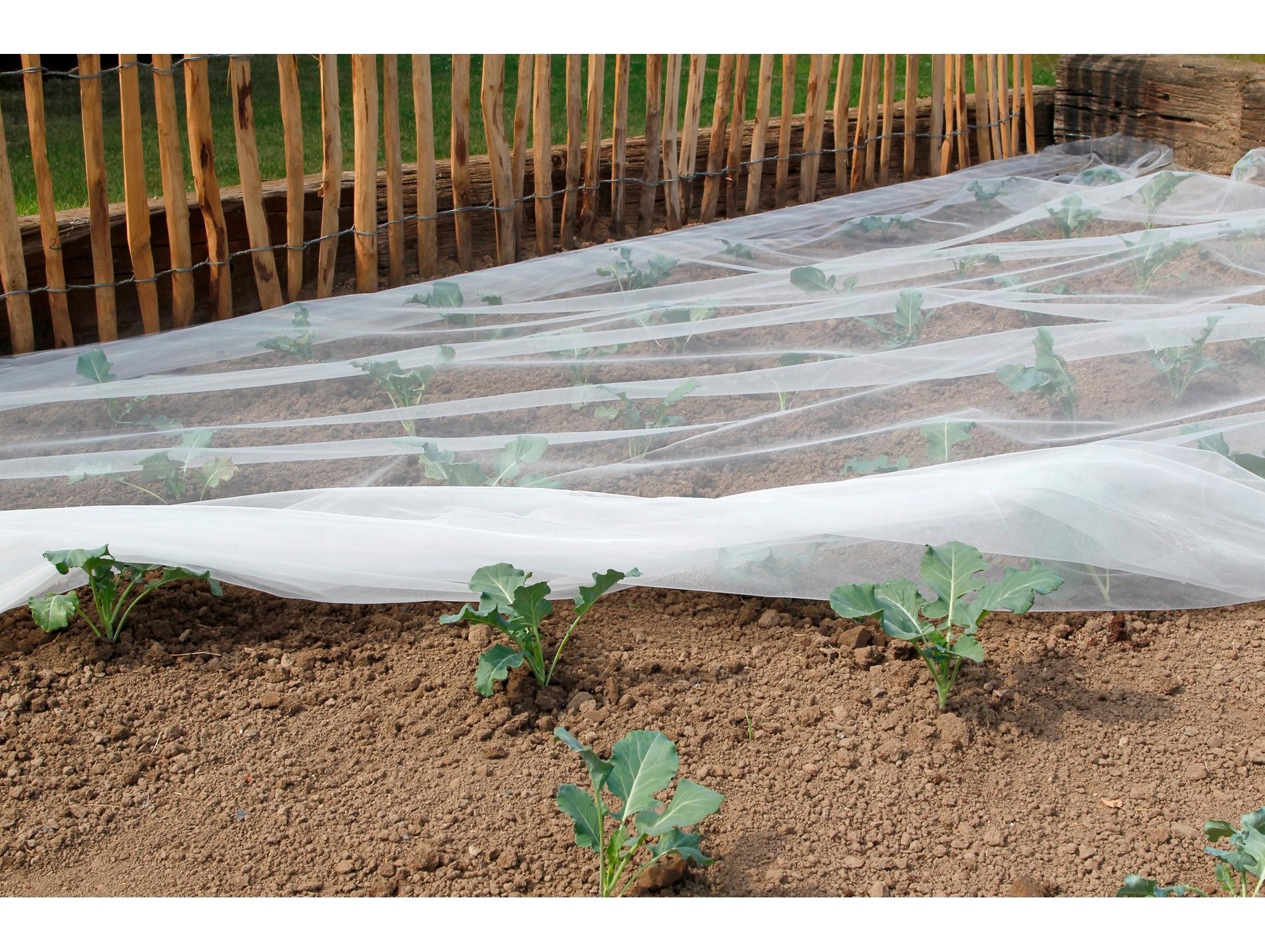 Filet Anti-Insectes Biocontrol 3,30X10M - Protection Des ... encequiconcerne Filet De Protection Jardin