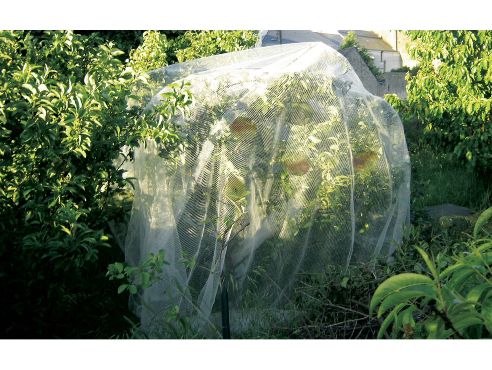 Filet De Protection Protect Fruit Spécial Verger 5,20X5M ... encequiconcerne Filet De Protection Jardin