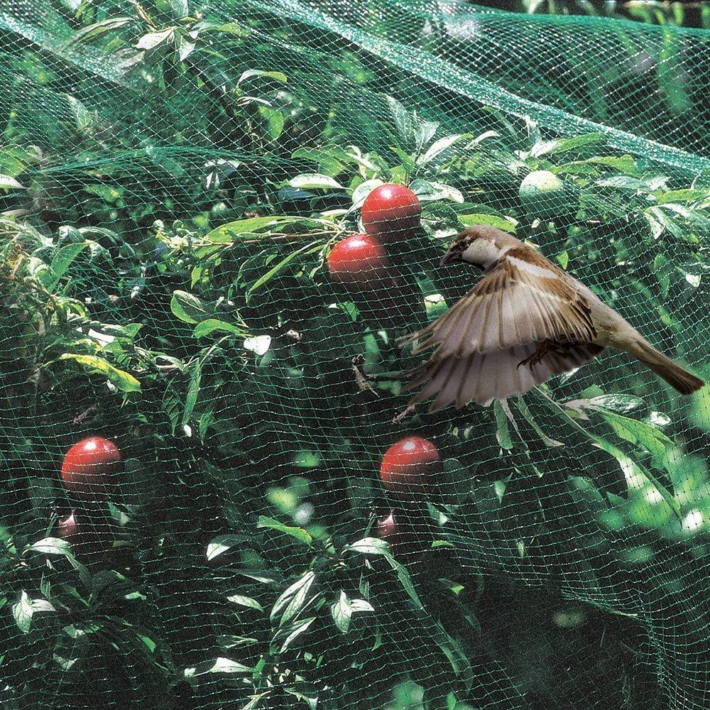 Filet Oiseaux 5X10M - Gamm Vert avec Filet De Jardin À Oiseaux