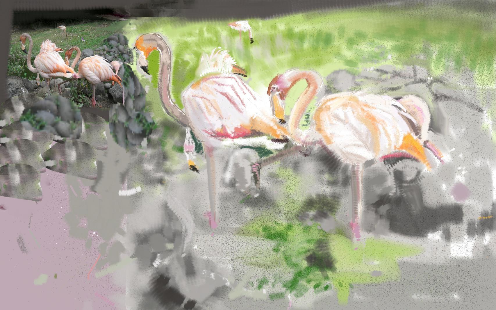 Flamant Rose Du Jardin De Deshaie Digital Arts By Danila ... destiné Flamant Rose Jardin