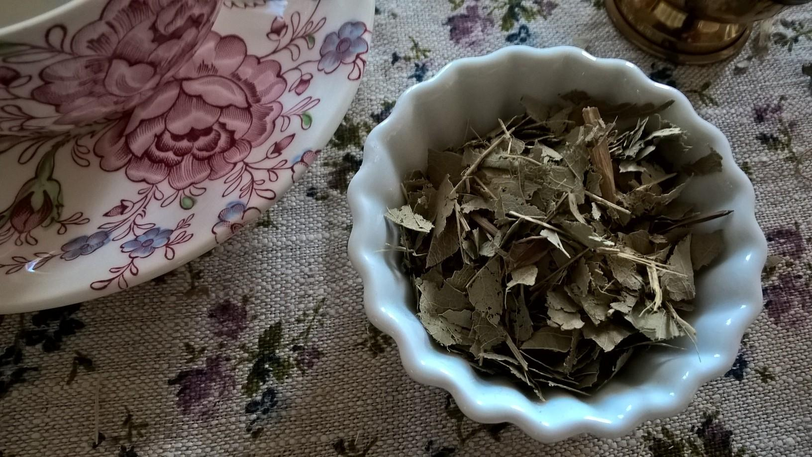 Frêne Fraxinus Exelsior Plante En Vrac Feuilles avec Bruler Feuilles Jardin