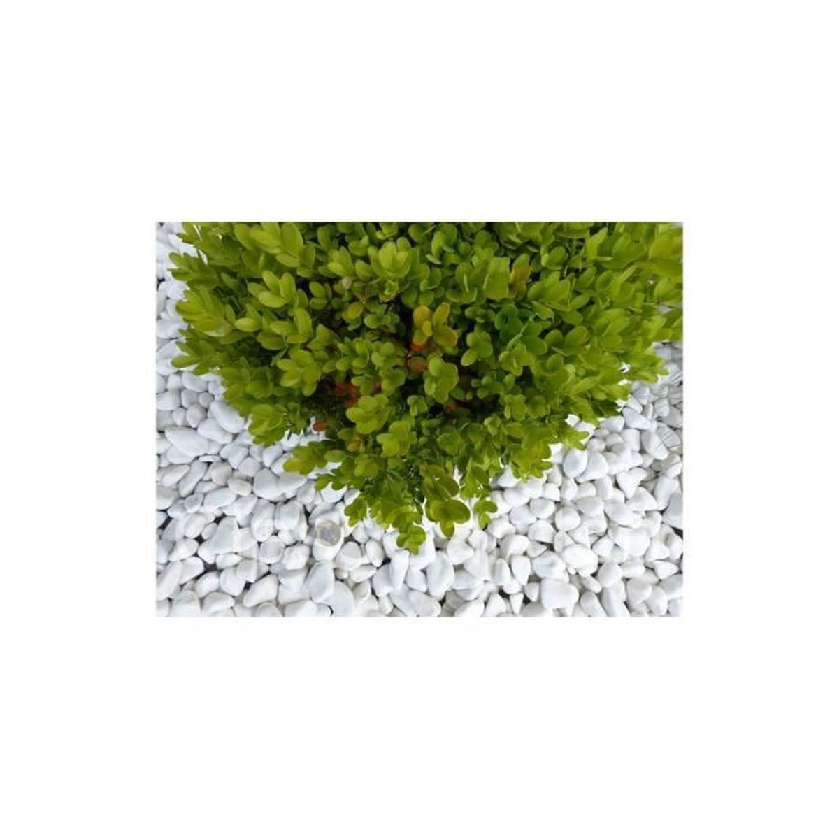 Galet Blanc Pure Pack De 7 M² Calibre 12-24 Mm concernant Galet Blanc Jardin Pas Cher