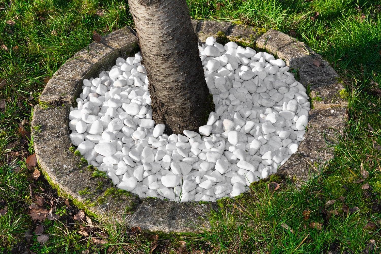 Galets Et Graviers Pour Aménager Votre Jardin | Leroy Merlin pour Jardin Avec Galets Blancs