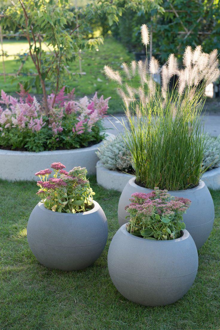 Garden Trends 2019 - Green Plants With Flowers In Pa ... dedans Bache Verte Jardin
