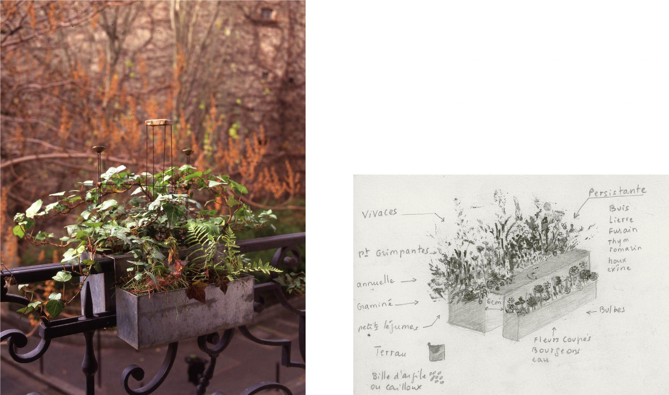 Gardens - Cécile Daladier serapportantà Delimitation Jardin