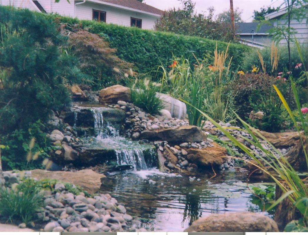 Gestion Conseil Horti-Vert avec Chute D Eau Bassin De Jardin