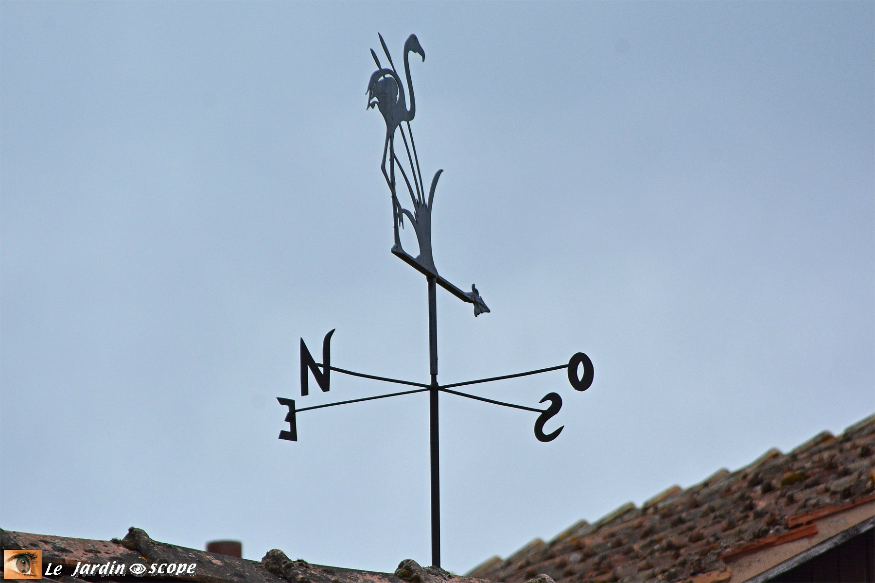 Girouette : Toutes Les Photos Sur Girouette - Le ... encequiconcerne Girouette De Jardin