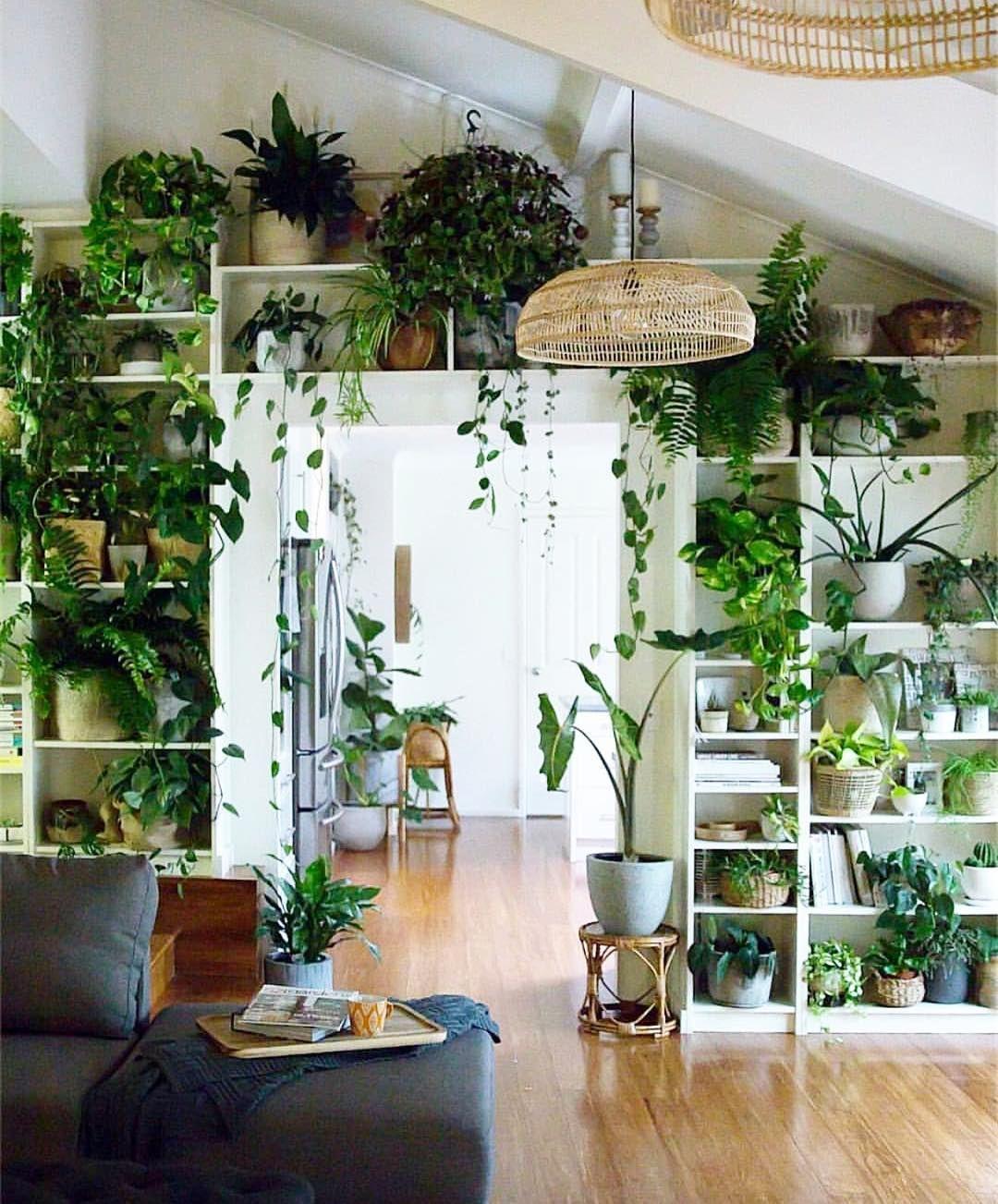 Görüntünün Olası Içeriği: Bitki, Masa Ve Iç Mekan | Ev ... tout Salon De Jardin Sophie