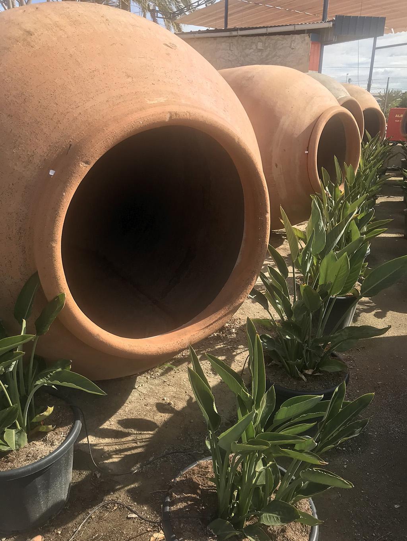 Grande Amphore Pour La Décoration – Des Plantes Pour Décorer ... dedans Amphore De Jardin