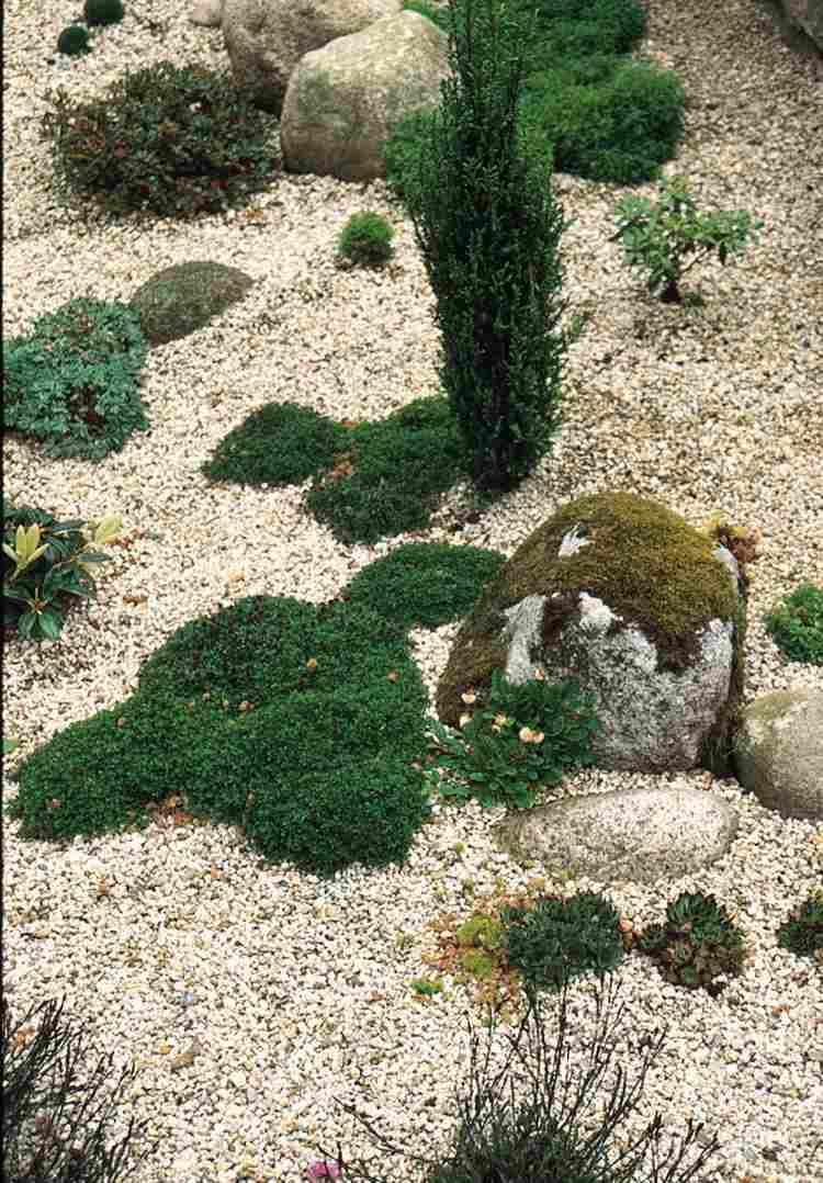 Gravier Blanc Pour Le Jardin: Astuces Et Idées Déco pour Idee Deco Jardin Gravier