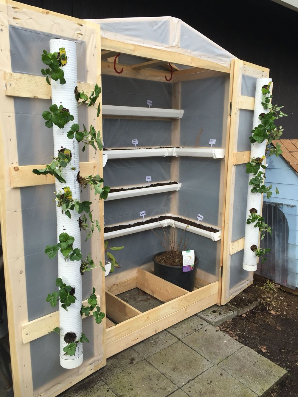 Greenhouse With Pvc Pipe And Gutters   Jardinage   Jardins ... dedans Pot Pvc Jardin