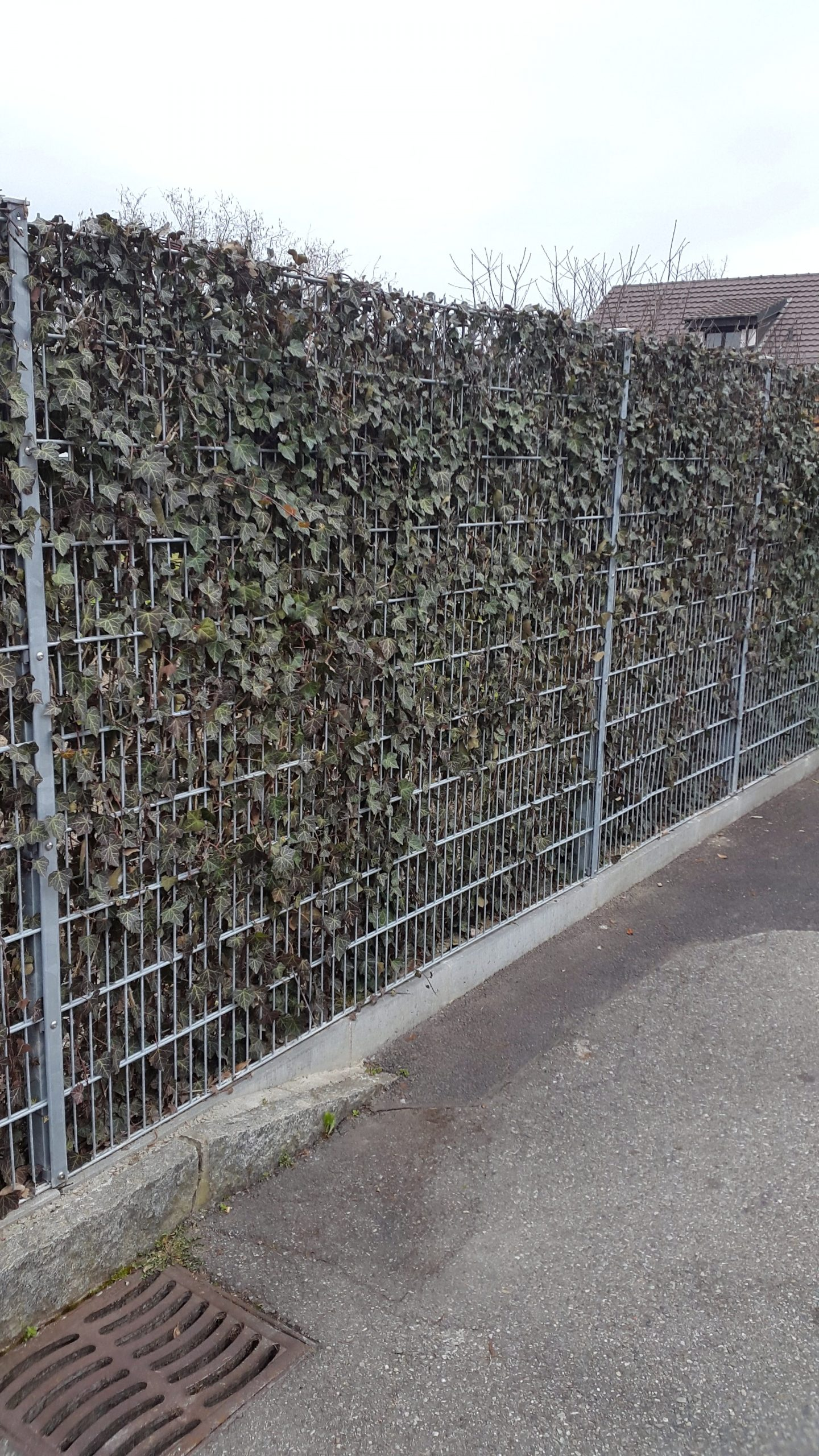 Grillage Sur La Bordure – Robi Jardin à Bordure De Jardin En Grillage
