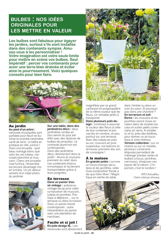 Guide Du Jardin Pg - Calameo Downloader encequiconcerne Idee De Plantation Pour Jardin
