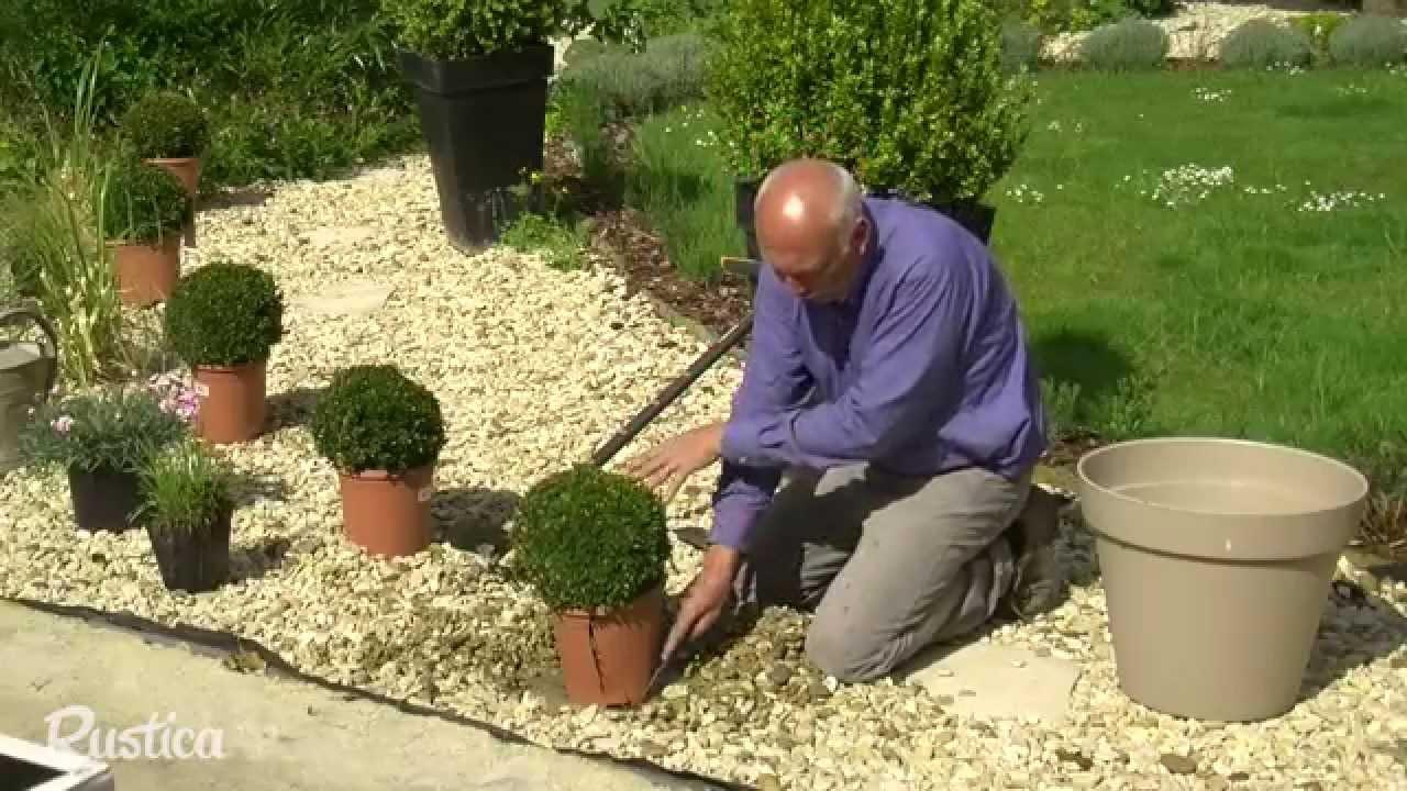 Habiller Un Gravier Avec Des Plantes à Jardin Avec Galets Blancs