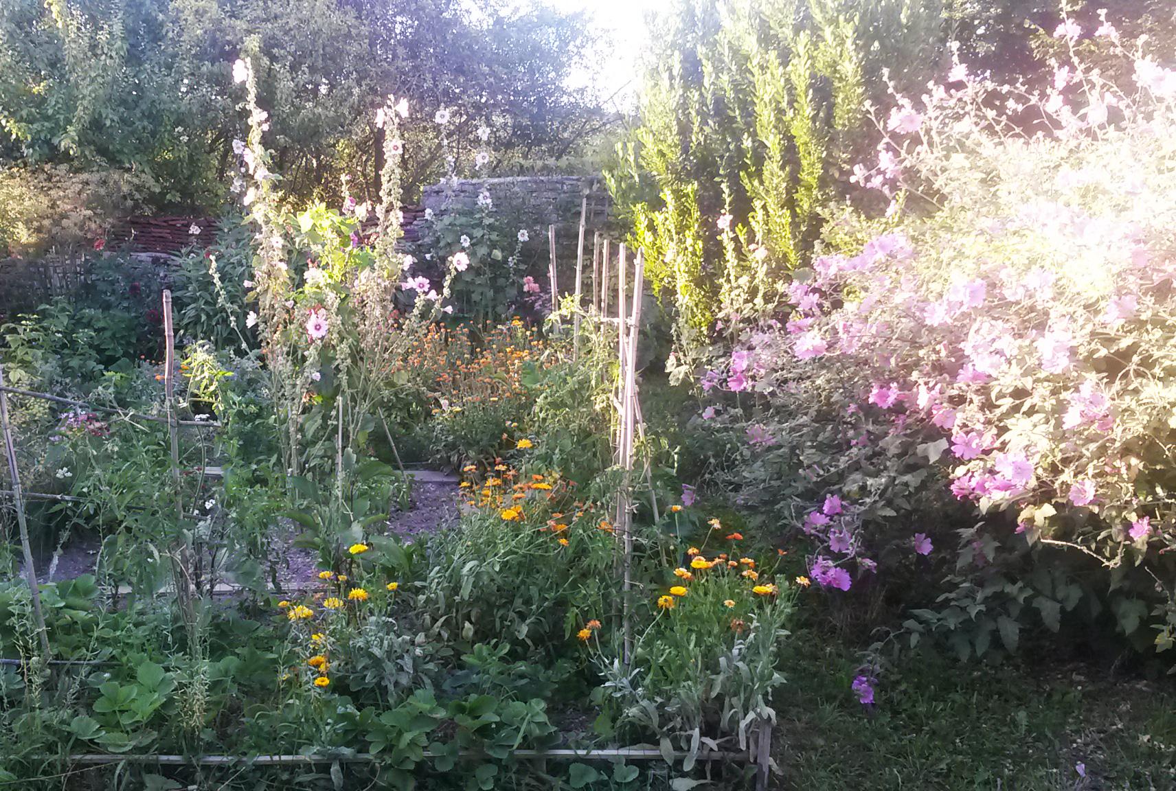 Herbesfauves-Fleuriste-Bordeaux-Jardin-Garden-Paysagisme ... destiné Am2Nagement Jardin